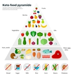 Healthy Eating Concept Keto Food Pyramide vector image