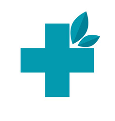 herbal medicine icon vector image