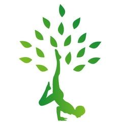 Person in yoga pose forming a healthy tree vector