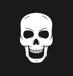 Skull on a pirate flag hand drawn skulls vector