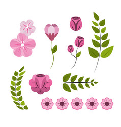 beautiful spring roses icon vector image vector image