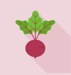 beetroot icon in flat design with long shadow vector image