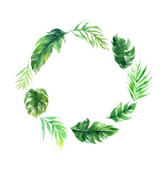 Blank circle green leave plant wedding decoration vector