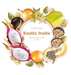 exotic fruits round frame realistic dragon vector image