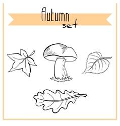 MushroomAndLeaves vector image
