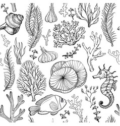 seamless pattern with marine hand drawn corals vector image
