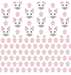 Seamless patterns with gray cat face and paw print vector