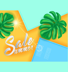 summer sale on papper background wit palm leaves vector image