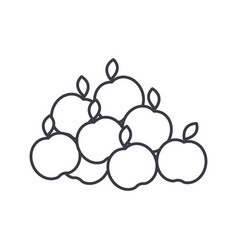 apples line icon sign on vector image vector image