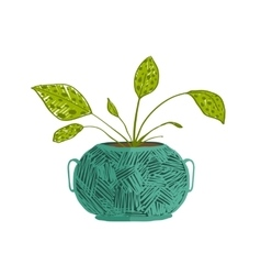 Green indoor leafy plant in pot vector image