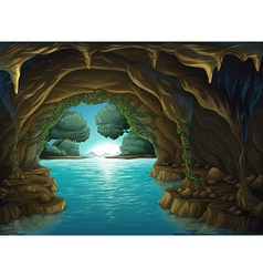 A cave and a water vector image
