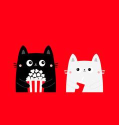 Cat set popcorn fsoda glass cute cartoon funny vector
