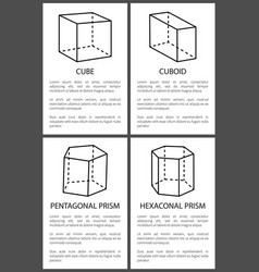 Cube and cuboid pentagonal and hexagonal prisms vector
