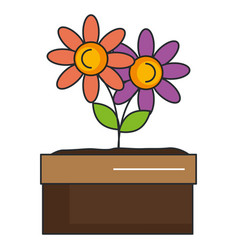 flower in pot icon vector image