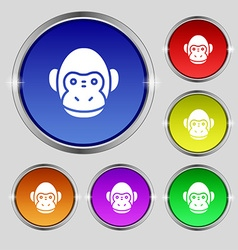 Monkey icon sign Round symbol on bright colourful vector image