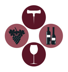 Set wine label design isolated vector