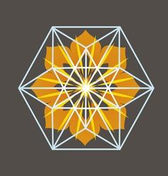 Star Tetrahedron print vector image vector image