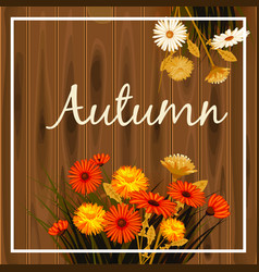 Autumn flowers fall leaves banner greeting vector