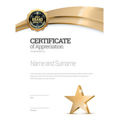 certificate template diploma of modern design or vector image