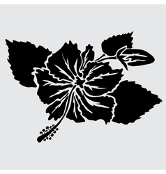 decorative hibiscus vector image