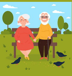elderly couple in love on bench outdoors pigeons vector image