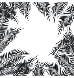 palms tree frame vector image