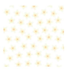 Plumeria Background vector image
