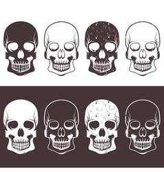 Set of aggressive skulls design template vector