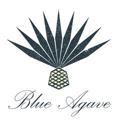 blue agave logo design vector image