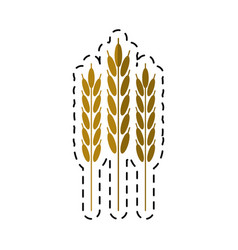 cartoon harvesting wheat ears vector image