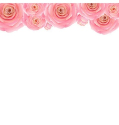 Pastel Pink Rose Border vector