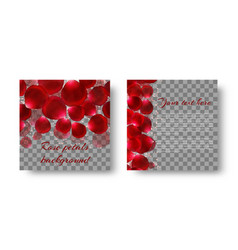 Romantic pattern with rose petals vector