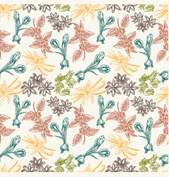 seamless pattern with spice herbs vector image