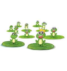 happy frogs on lotus leaves vector image vector image