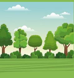 tree forest natural landscape rural vector image