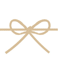 twine string tied in a bow isolated on white vector image