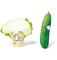 cucumber and cauliflower vector image