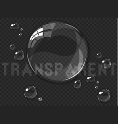abstract water drops isolated on black vector image