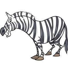 cartoon illustration of funny african zebra vector image