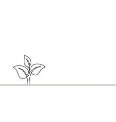 continuous line drawing growing sprout plant vector image