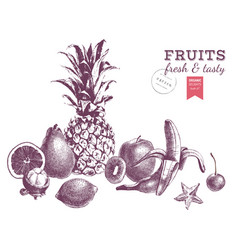 hand drawn juicy fruits monochrome border vector image vector image