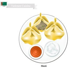 Manti or Turkmen Dumpling Filled with Spiced Meat vector