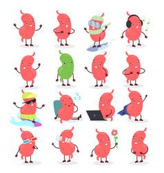 set cute cartoon stomach vector image