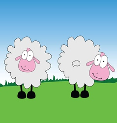 sheep cartoon on a grass vector image