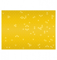 cells of a honeycomb seamless vector image vector image
