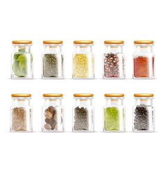 herbs spices jars icon set vector image