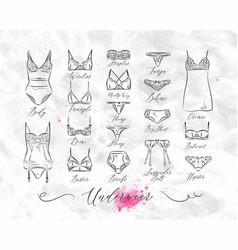 underwear classic icons vector image