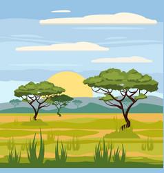 African landscape savannah nature trees vector