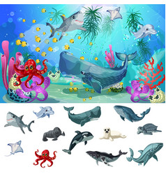 Cartoon sea and ocean fauna concept vector