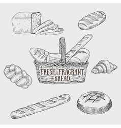 Graphic kinds of bread include bread basket vector image